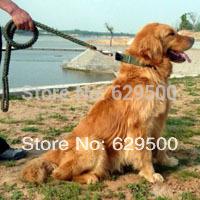 50pcs Big Dog Slip Leash/Leads, Dog Pet Harness, Dog Traction Training Collar Factory Wholesaler