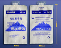 Free shipping Ice bag cold ice pack put in the Cooler bag 400ml and 450ml