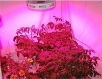 Promotional Growing Led Lighting Kit UFO Led Grow Light Garden Lighting Fixture 90w Round Shaped Indoor Lamp 45pcs Leds
