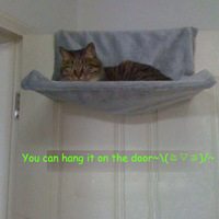 New 2014 Products for Cats Climbing Cat Bed Cat Hammock Tapestry Pet Bed