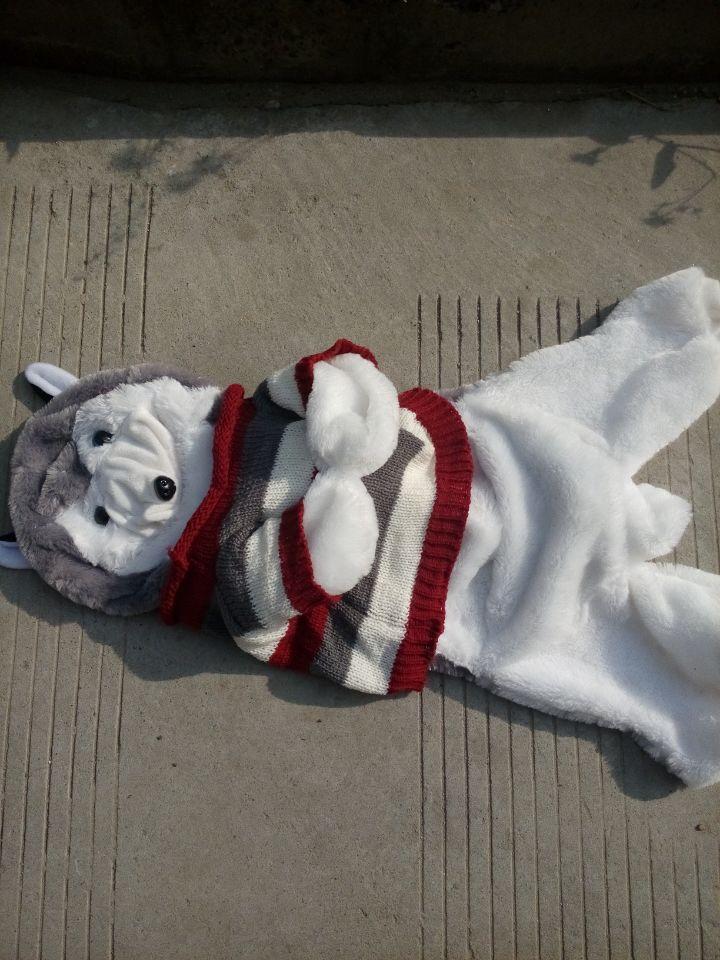 150cm Husky dog skin plush toys, teddy bears hull. Large animal coat factory wholesale(China (Mainland))