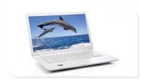 Free shipping 13.3inch laptop computer Intel N2600/D2500 dual core ultra thin notebook computer 4GB DDR3 RAM 500GB webcam WIFI