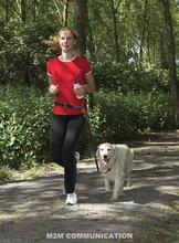 cheap nylon dog lead
