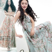 2014 Summer Lady Casual Big Sweep Flower Print Long Chiffon Beach Dress High Quality Bohemia Dress S,M,L,XL Factory Low Price