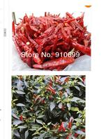 20g WHOLE Sun Dried PEPPERS Fresh BHUT JOLOKIA Chili Pepper