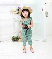 Hot Wholesale 2014 Summer Flower Baby Girl One-piece Cotton Romper Carter Baby Girl Summer Jumpsuit Beach Wear 4pcs/lot