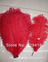 Free Shipping 24 Pcs/lot  Red Natural 40-45cm(16-18 Inches) Ostrich Feathers O-2-75