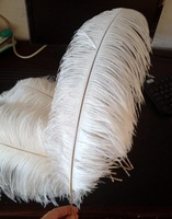 Free Shipping 12 Pcs/lot  White  Natural 60-65cm(24-26Inches) Ostrich Feathers O-3-45