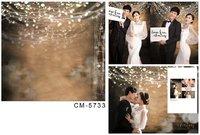5X7ft Flash Light new 2014 wedding background backgrounds for studio fotografia Digital cloth photo curtains vinyl backdrop