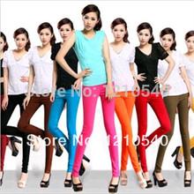 wholesale high waist pant