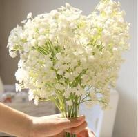 $2 off / $7 60pcs/bag Babysbreath Flower Seeds Flower Pots Planters 2014 Home Garden Bonsai Garden Supplies for DIY
