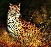 Jungle Cheetah Big Cat Wild Life Signed Original Modern Art Realism Oil Painting