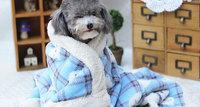 Free Shipping Fashionable Wholesale 1pcs Bear Grid  Warm Blanket,Pet Dog Kennel/Bed