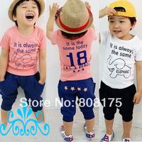 Summer 2014 small children's summer child clothing male child clothes  T-shirt harem pants set