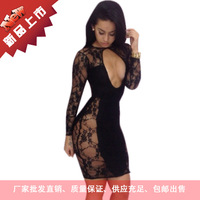 2014 foreign trade explosion models Lace Dress lace dress sexy party dress club dress 5543