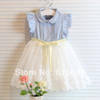 Wholesale 2014 New Fashion Girl Sleeveless Bow Tutu Dress Kids Clothes 5pls/A lot Free shipping T017