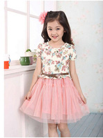 Retail 2014 spring and summer new Korean children's short-sleeved floral dress tutu Free Shipping