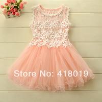 Girls lace dress New  2014  Summer  Korean version  Lace Flower  Gauze  Princess  Party  Dresses  5pcs/lot Children's clothing