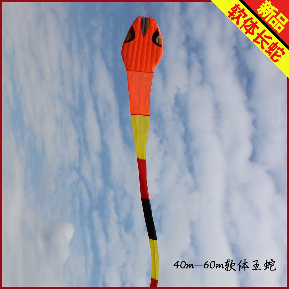 software kite snakes kite string parafoil stunt kite surf outdoor fun & sports dragon weifang kite flying toys rainbow volante(China (Mainland))