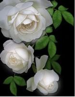 Free shipping DIY Diamond Painting white elegant 5D resin roses Rhinestone Diamond Embroidery Needlework Set 30*38cm