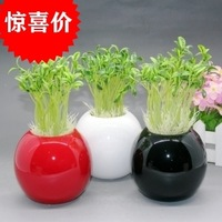 Fashion ceramic decoration gift home decoration brief round ball vase flower
