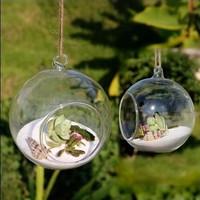 10Pcs/ Lot Modern Hanging Clear Round Crystal Glass Vase Flower Balls Terrarium Vases For Wedding Decoration Dia 8 cm