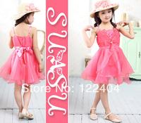 New Children tutu princess dress
