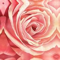 Free shipping DIY Diamond Painting Flowers Rose resin Rhinestone Diamond Embroidery Needlework Set 40 * 40cm