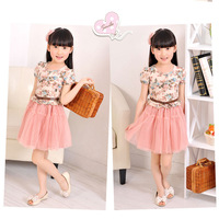 2set free shipping 2013 summer children's clothing skirt female short-sleeve dress child baby princess gauze dress