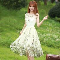 New  2104 Women Summer Dress Hot Selling Vintage Slim Waist Sleeveless Chiffon Dress Organza Embroidered Dress