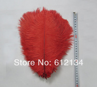"""Free shipping 100pcs/lot 15-20cm 6-8"""" red ostrich plumes feather Ostrich feathers home decoration"""