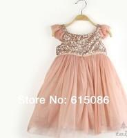Free Shipping 1 lot = 5 Kids 2014 sequined chiffon skirt girls princess dress skirt girl dress tull 31tellitex