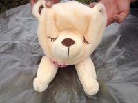 90cm free Shipping Papa Bear doll, bear skin, large animal hull panda jacket, teddy bear skin coat plush toy