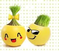 retail Gift face expression Hair man Plant Bonsai Grass Doll Office Mini Plant Fantastic