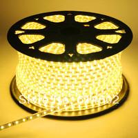 3528 LED Strip 10M 220V 60LEDs/M IP65 Waterproof warm White LED  Strip Light+ Controler