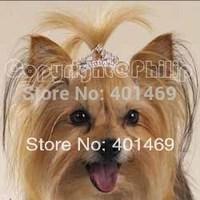 New 6Pcs lot free shipping 38mm Clear AB rhinestone tiara crown charm pet hair ornament barrette accessories