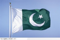Free Shipping Retail NEW 100% Polyester Printed 96x144 cm (5x3)ft PAKISTAN  pk  PAK National Flag for Mixed