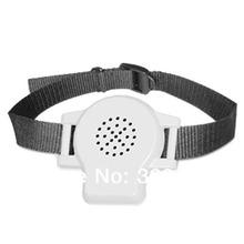 pet training collar price
