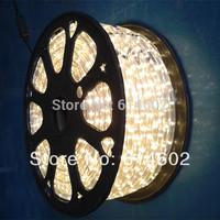 Free shipping 5050 60leds/m 220V led strip ,50 meters/lot warm white led strip+plug+clips
