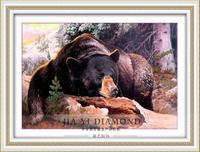 DIY diamond painting  retail 80*55CM 3D square resin diamond cross stitch  rhinestone pasted  Full embroidery  Bear