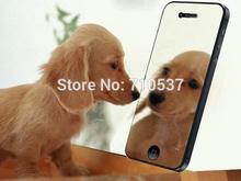 mirror iphone price