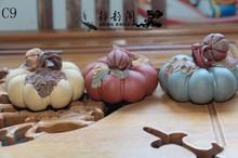 pumpkin pets promotion