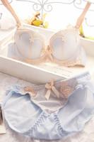 2014 Women's Lace bra & brief sets lady sexy push up Plush girls Women bra set garter brassiere Underwear lingerie set CY8144