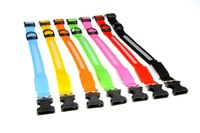 Nylon Stripe Band Dog Pet LED Flashing Collar Light Up Lead Necklace Adjustable (Width 2.0cm) S,M,L, and Various Colors