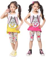 1 Set Retail 2014 New 100% cotton kids clothing set, T-shirt+pant, rabbit children set, 2 colors available