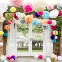 Promotion!!! Hot selling! 50pcs/lot 10'' Paper Tissue Wedding Party Pompoms Decoration