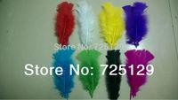 Wholesale 200 pcs/Lot Turkey Marabou Feathers washed goose down 8-16 cm Fluffy Dress jewelry/Christmas/Halloween decoration