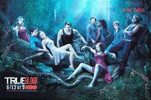 Temporada de True Blood cartaz de parede 6 série de TV Show Poster Pictures Home Room Decor 12 x 18 20 x 30 24 x 36 presente Festival(China (Mainland))