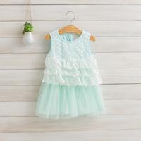 2014 New girls princess dress children summer cake dress lace embroidery cotton pink/green/purple/yellow 2-8 yrs 5 pcs/lot 1180