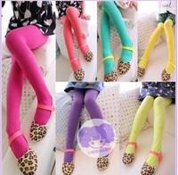 2014 spring children's clothing children's pants female child legging child candy color pantyhose socks dance socks